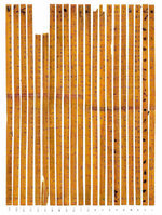 Ancient Chinese used bamboo sticks as calculator. 52015.jpeg