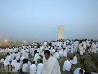 Around Two Million Pilgrims Pray at Mount Arafat