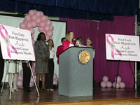 Pink Potluck in Illinois about breast cancer screenings