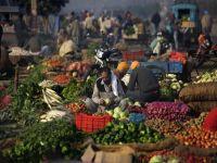 Africa...Organic Produce: Back to Basics. 47031.jpeg