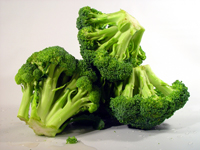 Agents find $40 million worth of cocaine in load of broccoli