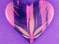 Marijuana may break your heart