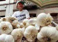 Garlic powerless in reducing bad cholesterol, new study says