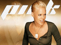Pink Falls out of Harness and Hit Crowd Barricade During Her Show in Germany
