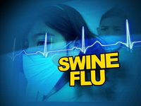 Swine Flu Deaths Decrease in South Africa