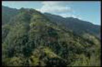 'Lost World' in remote Indonesian jungles