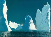 Iceberg spotting bonanza for flight operators off southern New Zealand