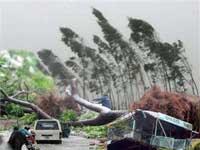 Tropical storm kills 17 in Vietnam