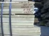 Brazilian police arrest gang that exported rare wood to United States