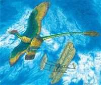 Flying dinosaurs invented biplane technology