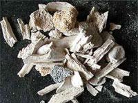 Stonehenge discovered in Ukraine