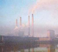 Polluted air might increase stroke risk