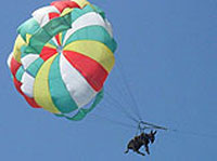 Parasailing Donkey Terrifies Holiday-Makers in Russia's South (Video)