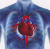 Heart disease death rates grow among young people