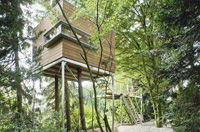 Russian man orders 100,000-dollar worth tree house for his son