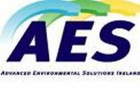 AES Raises Its 2009 Earnings