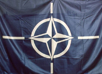 Why Russians choose NATO army instead of Russian army?