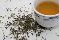 Green tea fights psoriasis and dandruff, new study says