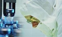 Parliament debates Australian ban on stem cell cloning