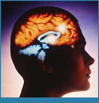 Stem cells give hopes for patients with brain trauma
