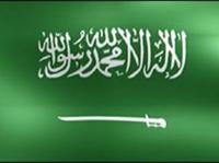 Saudi officials unveil gas explosion death toll