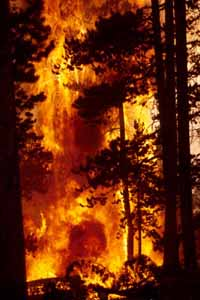Wildfire in Central Oregon: at least 500 people evacuated