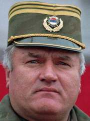 USA and Britain to hunt Mladic together