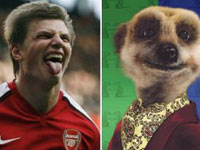 Why Arshavin's Team Mates Call Him The Meerkat?