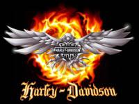 Harley-Davidson Scrapes Through Crisis