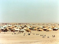 Security Council under pressure over human rights in Western Sahara