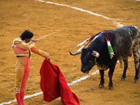 Spain's Catalonia To Ban Bullfighting