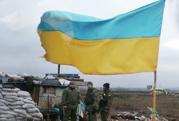 Ukraine wants to fight in Syria for US. Ukraine