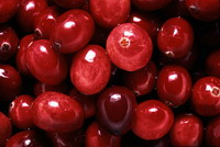 Appetite for cranberries grows overseas