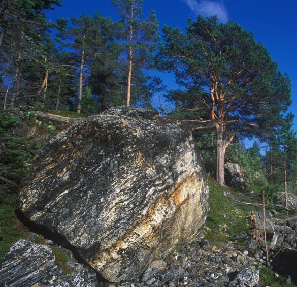 Karelia's mysterious Syamozero Lake takes lives of 14 children. 58247.jpeg