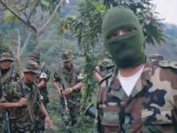 The Paramilitaries and the Colombian Farce