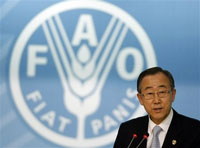 Food production expected to rise by 50 percent by 2030, UN chief says