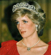 Diana's private secretary says he expressed concerns about security