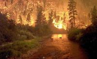 Wildfires rage through western America