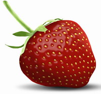 Man spends much of his professional life hunting for ideal strawberry