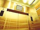 Golden elevator