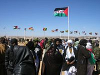 Saharawi activists kidnapped, tortured and threatened. 55285.jpeg