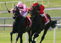 Hurriane Run favorite for repeat win, Shirocco fancied to challenge