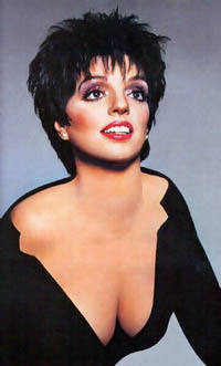 Liza Minelli accepts guest-starring role on