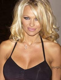 Pamela Anderson weds for the third time
