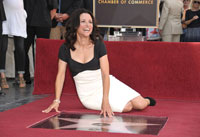 Julia Louis-Dreyfus Starred on Hollywood Walk of Fame