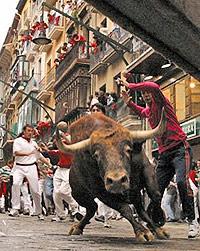 Spanish party: the bulls running in Pamplona