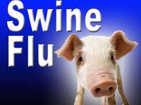 Swine Flu Fortifies Its Name