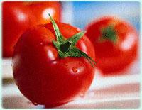 Americans bid farewell to tomatoes amid salmonella outbreak