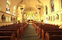 The Purification of the Catholic Church