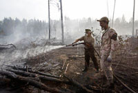 Forest Fires Cause Damage of  Billion to Russian Economy